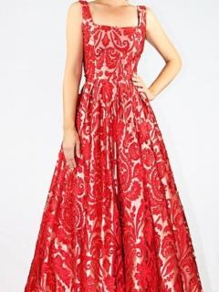 Crimson Laser Cut Lace Gown